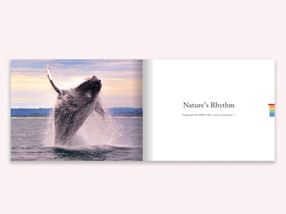 Sean O'Sheas Byron Bay Inside Book Graphic Design By Mango Tree Media
