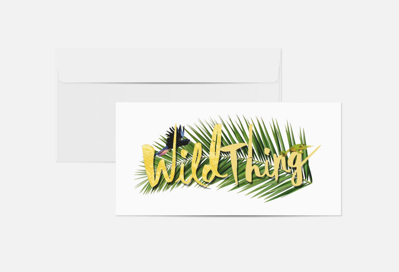 Wild Thing Film Pitch Logo Graphic Design By Mango Tree Media